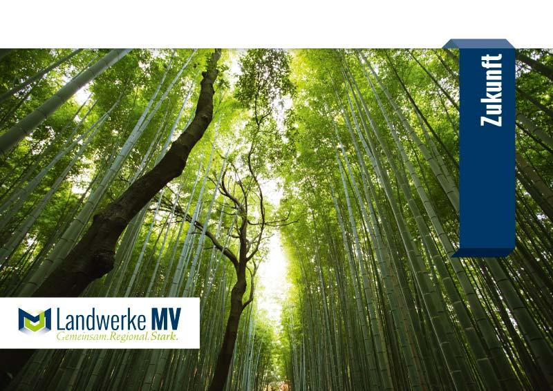 Logo LandwerkeMV 16